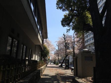 nagonojin_1.jpg