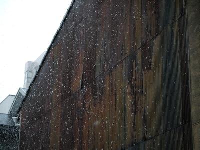 snow2013.jpg