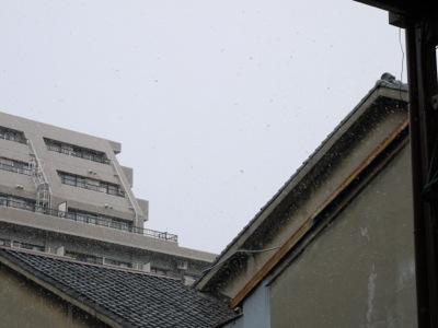 snow2015.jpg
