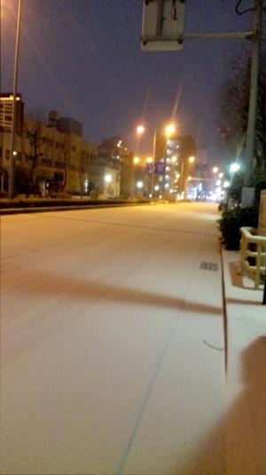 snow2016.jpg